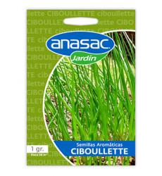 Anasac Semilla Ciboullete 1 Gr 1500294